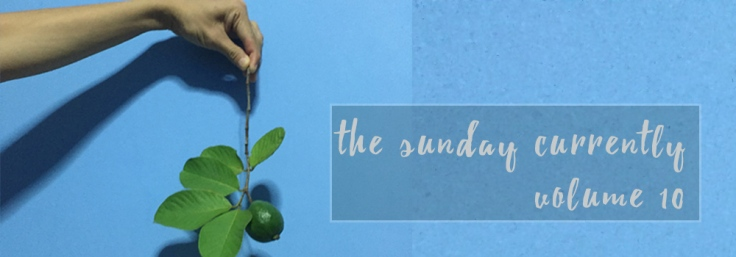 the-sunday-currently10
